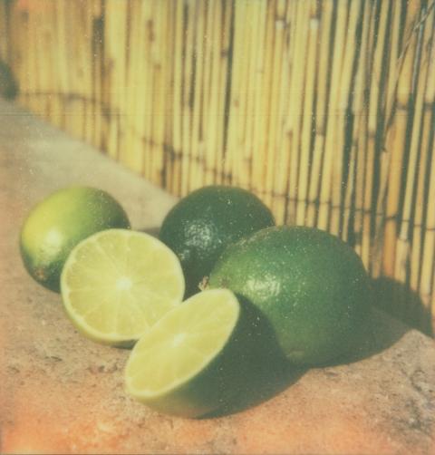 limes, Patrick F Tobin